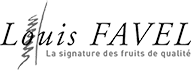 logo-louis-favel