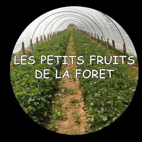 earl-les-petits-fruits-de-la-foret-viallet-christophe-salaise-sur-sanne-01